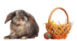 Kaninchen und Korb mit Ostereiern Stockfotografie