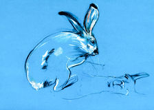 Kaninchen- und Lamaanstrich Stockfoto
