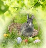Kaninchen und Ostereier Stockfotografie