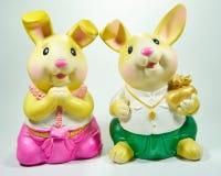 Kaninchen zwei Stockbilder