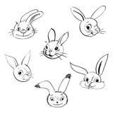 Kaninchenkopfikonen und -symbole für Auslegungisolat Lizenzfreie Stockfotos