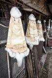 Kaninchenpelze, die an den Haken im Bauernhof, ländliche Szene hängen lizenzfreies stockfoto