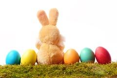 Kaninchenspielzeug, Ostereier auf dem grünen Moos lokalisiert auf Weiß Stockfotos