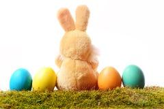 Kaninchenspielzeug, Ostereier auf dem grünen Moos lokalisiert auf Weiß Stockbild