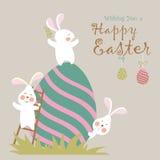 kanineaster ägg Arkivbild