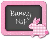 Kaninen ta sig en tupplur barnkammareramen Arkivbilder