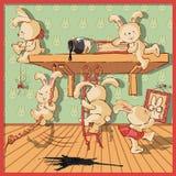 Kaniner Arkivbilder