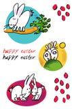 Kaniner Royaltyfri Fotografi