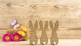 kaniner easter tre Arkivbild