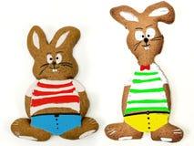 kaniner easter två Arkivfoto