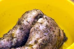 Kaninkött Arkivbild