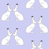 Kaninmodell Arkivfoto