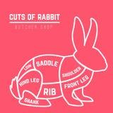 Kaninsnittdiagrammet för slaktare shoppar royaltyfri illustrationer