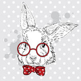Kaninvektor Handteckning av djuret tryck hipster Vattenfärgkanin släkt tappning för antik collectible postobjektvykort pojke Royaltyfri Foto