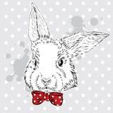 Kaninvektor Handteckning av djuret tryck hipster Vattenfärgkanin släkt tappning för antik collectible postobjektvykort pojke Royaltyfria Foton