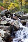 kanion jesieni zdjęcie royalty free