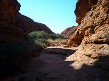 kanjon royaltyfri foto