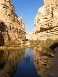 kanjon arkivfoto