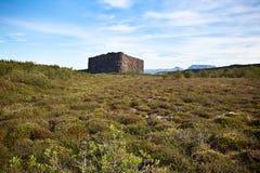 Kanjon Asbyrgi, Island Arkivbild