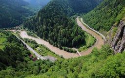 Kanjon av den Mures floden i Transylvania arkivbild