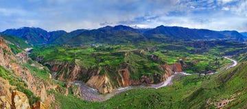 Kanjon Colca, Peru Arkivfoto