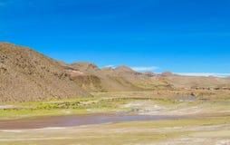 Kanjon för flod för Altiplano landskap torr Royaltyfria Bilder