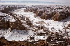 Kanjon i öknar av Kasakhstan royaltyfria bilder