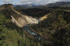 Kanjon i den yellowstone nationalparken, wyoming, USA Royaltyfri Bild