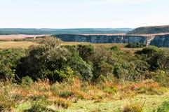 Kanjon i sydliga Brasilien Fotografering för Bildbyråer