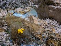 Kanjon med blått royaltyfri bild