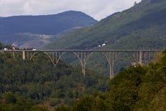 kanjon montenegro tara Royaltyfri Fotografi