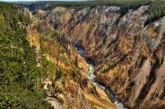 kanjon np yellowstone Royaltyfri Foto