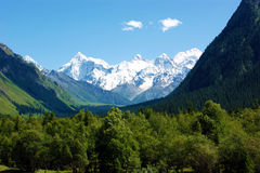 Kanjon och de snow-capped bergen arkivfoton