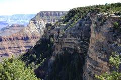 kanjon stora colorado Arkivfoto