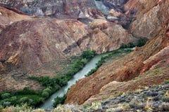 kanjoncharynflod Arkivbild