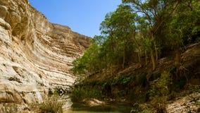Kanjonen Arkivbild