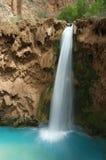 kanjonen faller den västra storslagna mooneyen royaltyfria foton