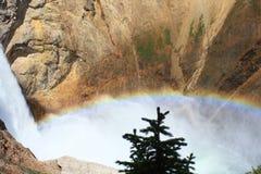 Kanjonen faller regnbågen Royaltyfria Bilder