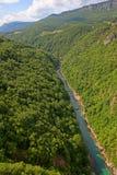 kanjonflod tara Arkivfoto