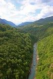 kanjonflod tara Royaltyfri Foto