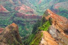 kanjonhawaii kauai waimea Arkivbild
