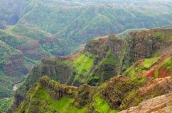 kanjonhawaii kauai waimea Arkivfoto