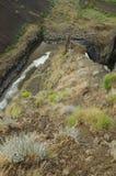 kanjonklippa som är brant till arkivfoton