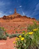 kanjonliggande moab utanför southwest USA utah Arkivfoto