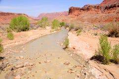kanjonpariaflod Arkivfoto