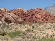 kanjonredrock Royaltyfri Fotografi