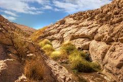 kanjonredrock Royaltyfria Foton