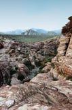 kanjonredrock Fotografering för Bildbyråer