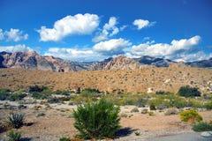 kanjonredrock Arkivfoton