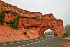kanjonredrock Royaltyfri Foto